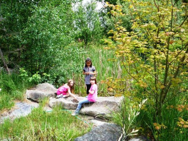 6-10-11 Suquamish Elementary Basket Marsh