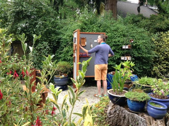 Sydni Sterling's Garden