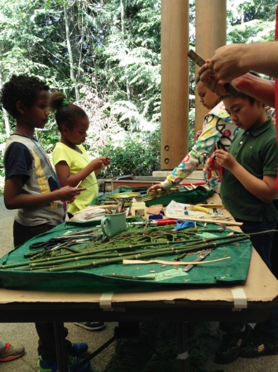 Shaping their twigs