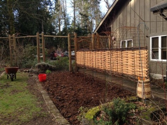 The area is spread with fresh compost.